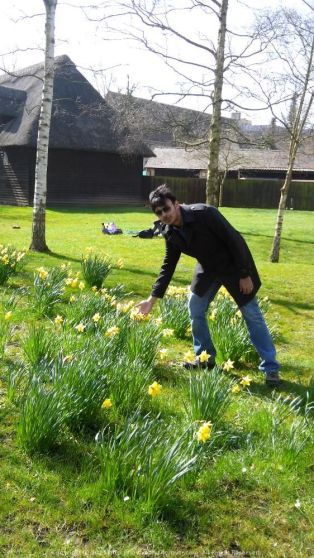 And then my heart with pleasure fills, and dances with the daffodils... @ Oxford UK