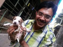 Puppy Love... Love these little pups in the backyard of my Lake Town house @ Kolkata